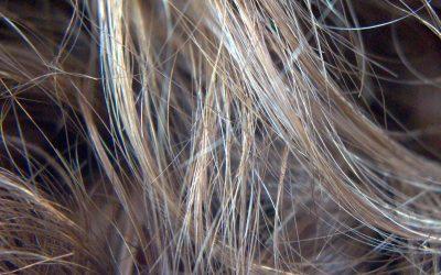 Debilidad de cabellos y uñas