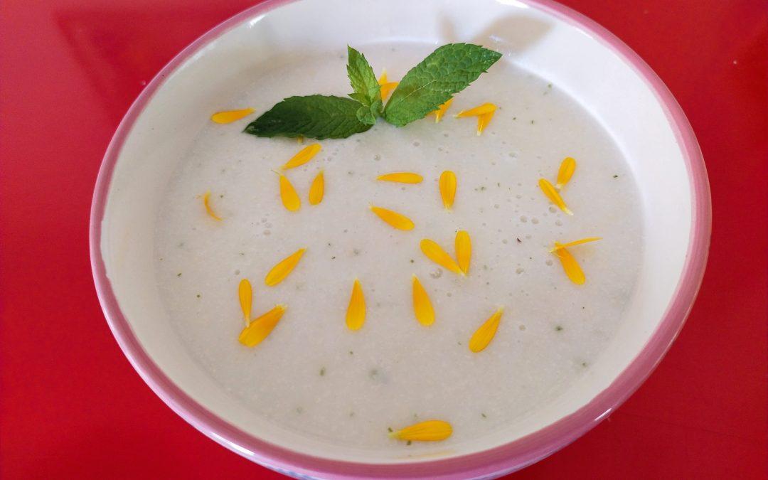 Sopa freda de meló, llet de coco i anacards amb rogers i pisto de pebrots-dinar