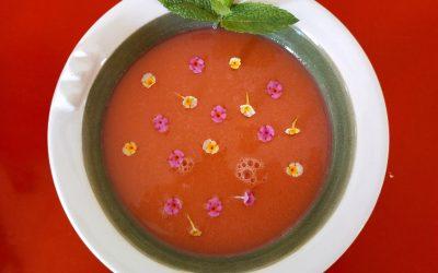 Sopa freda de síndria i tomata amb flors d'ocre i musclos al vapor-sopar